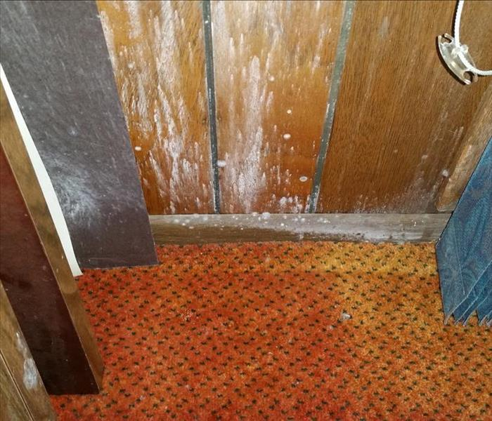 Commercial Commercial Water and Mold Damage in Jackson