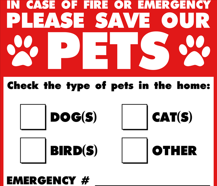 Fire Damage Pet Safety in an Emergency