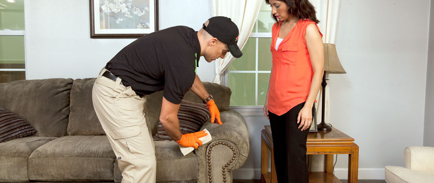 East Lansing, MI carpet upholstery cleaning