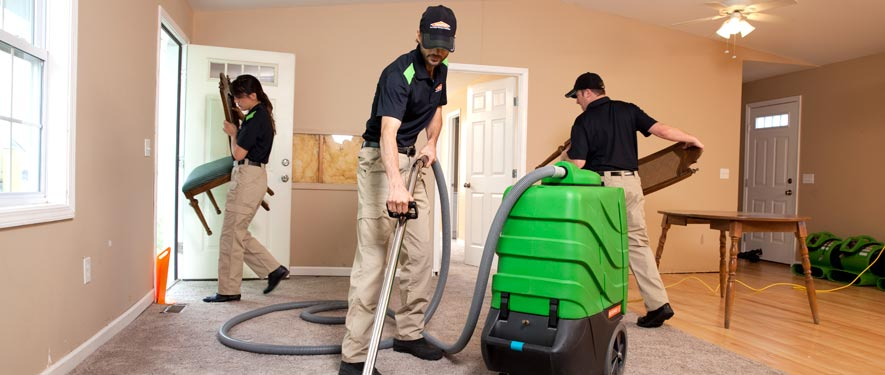 East Lansing, MI cleaning services