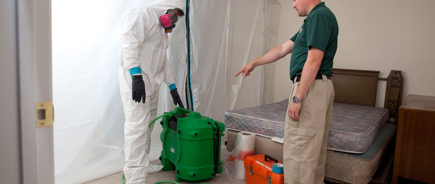 East Lansing, MI mold removal process